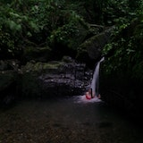 The Juan Diego Waterfall at El Yunque