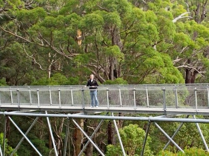 Tree top walk Perth  Australia