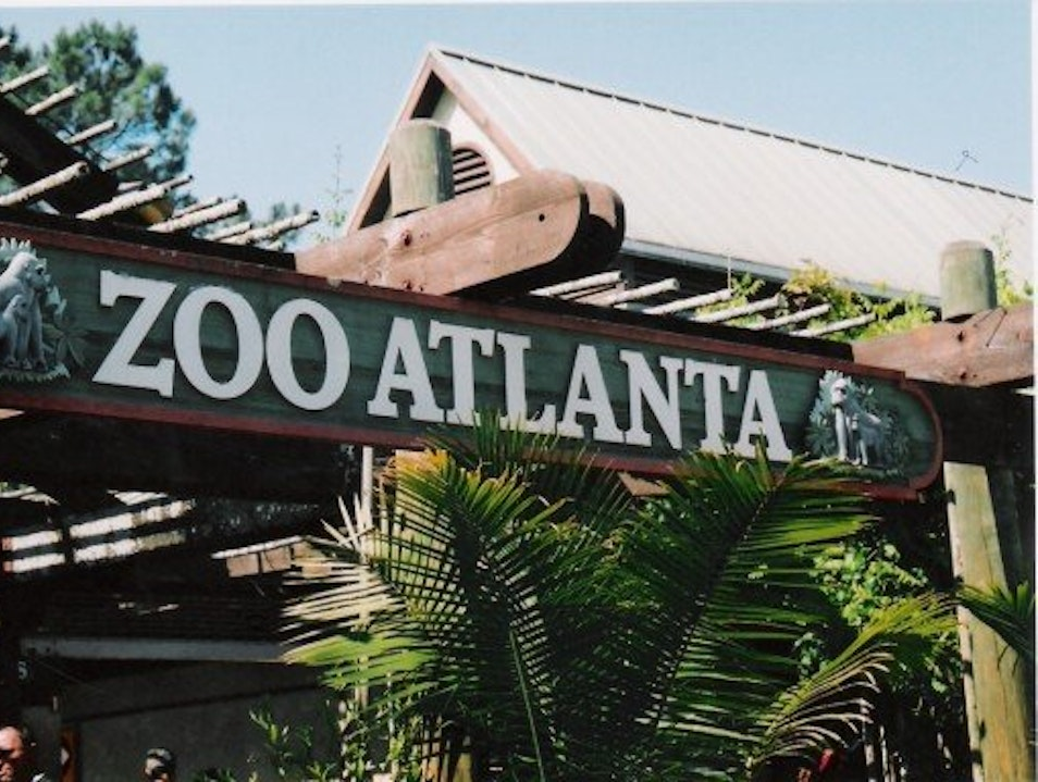 Conservation and Education at Zoo Atlanta