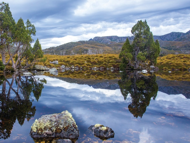 Cradle Mountain - Lake St. Clair National Park