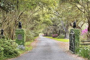 Charleston's Top Attractions