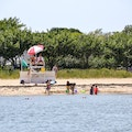Children's Beach Nantucket Massachusetts United States