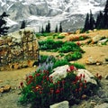 Mount Rainier National Park Ashford Washington United States