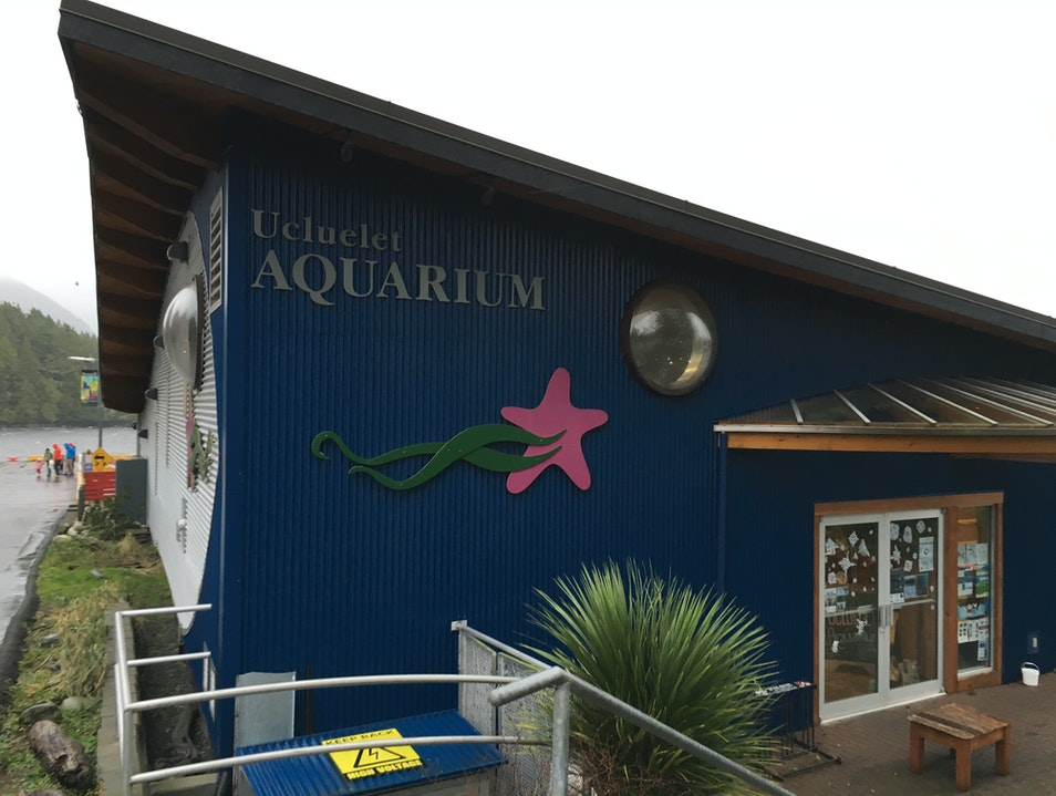 A Catch and Release Aquarium Ucluelet  Canada