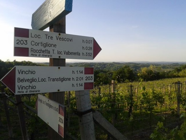 Hiking to Barbaresco with wine tasting