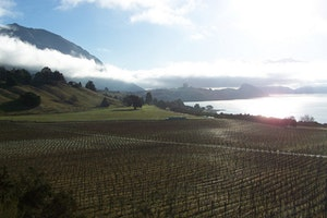 Rippon Vineyard & Winery
