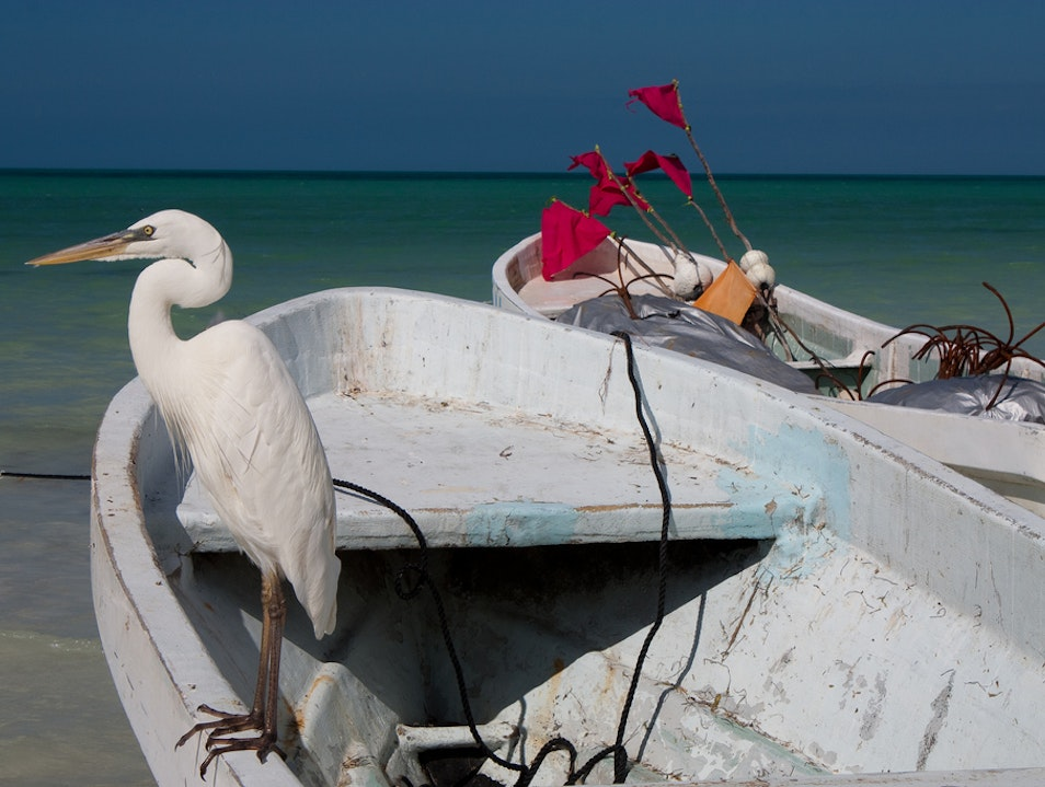 White on blue Holbox  Mexico