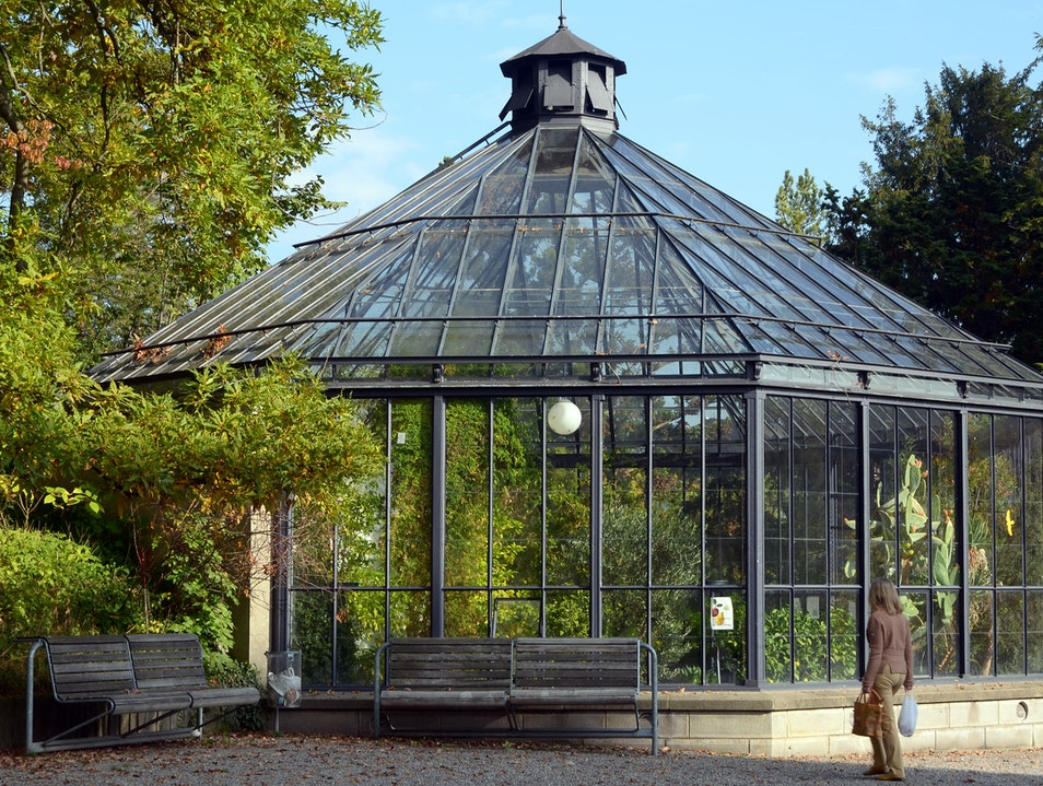 A Historic Botanical Garden in the Center of the City Zurich  Switzerland