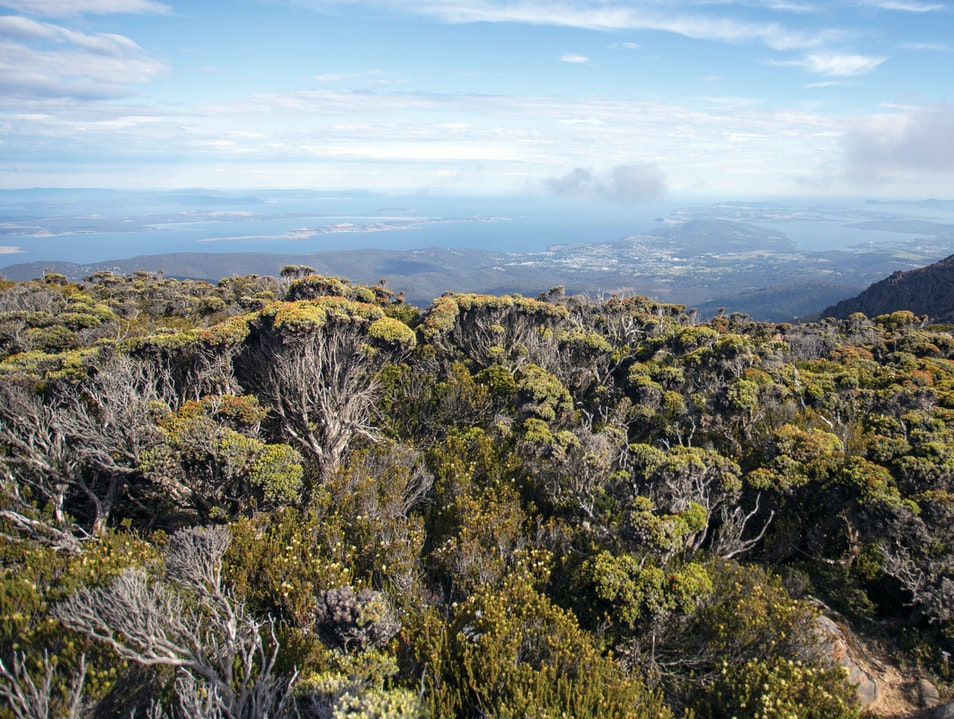 Mount Wellington  Hobart  Australia