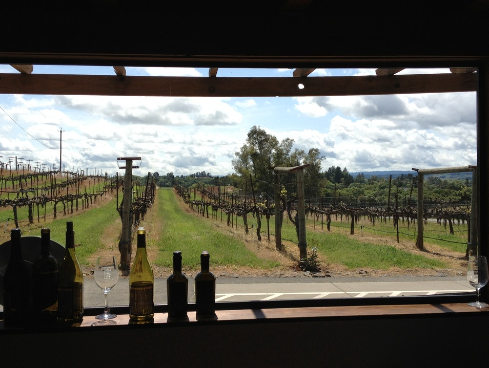 Off the Beaten Path Winery with Incredible Views Healdsburg California United States
