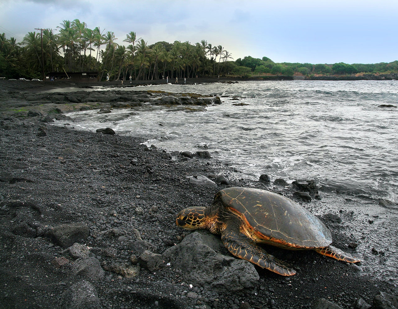12 Must-Do Experiences on the Big Island
