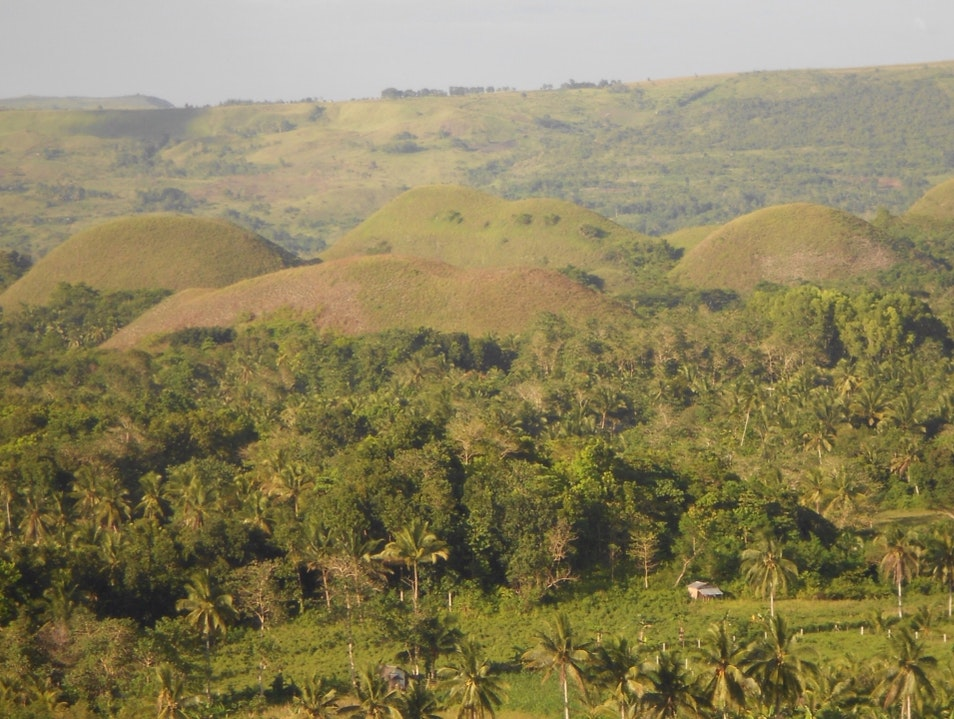 Chocolate Hills on the Island of Bohol Batuan  Philippines