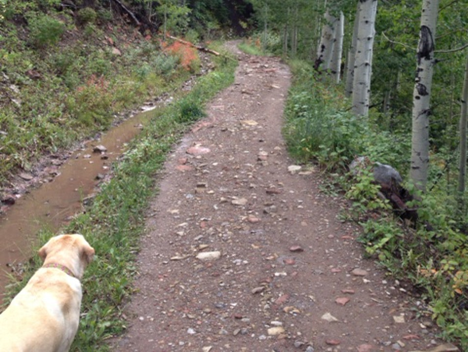 Taking a Walk on the Backside of Snowmass Mountain