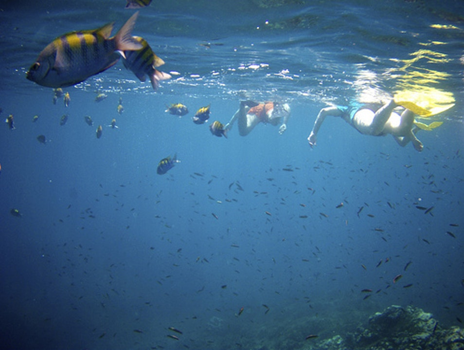Snorkeling off Playa Conchal Guanacaste  Costa Rica