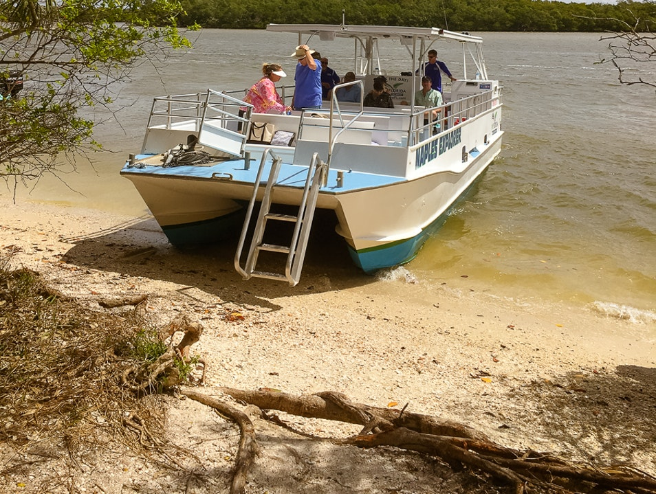 Purely Eco: A Nature Cruise to Keewaydin Island Naples Florida United States