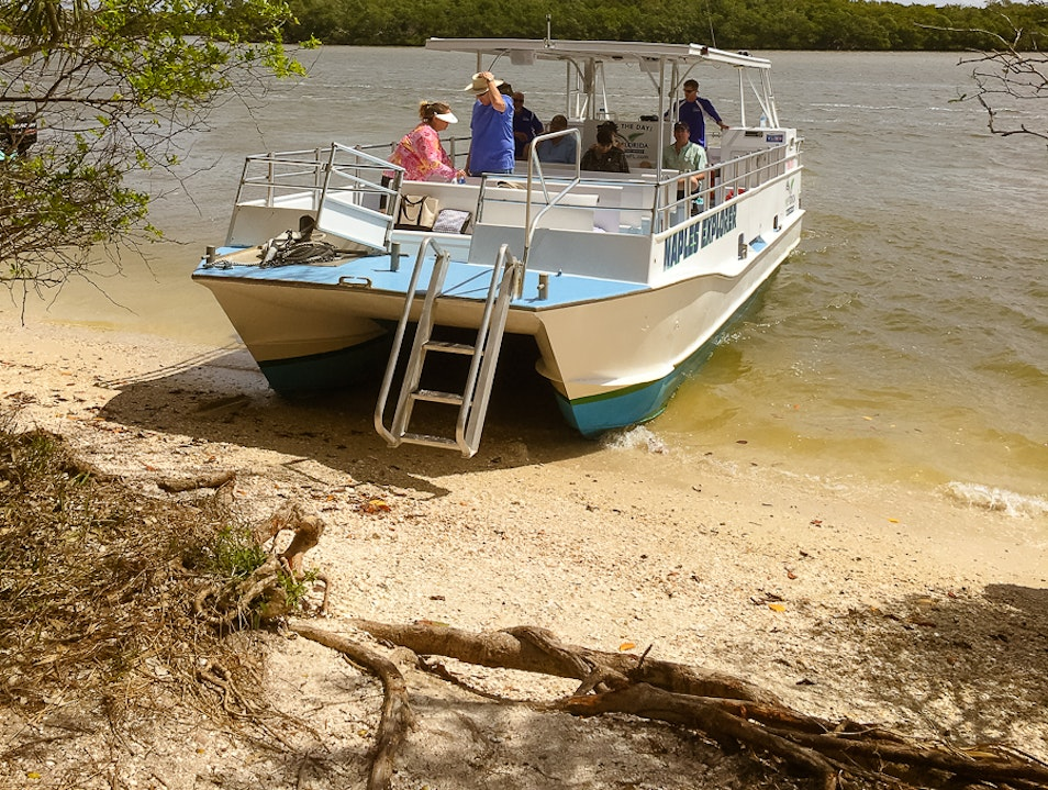Purely Eco: A Nature Cruise to Keewaydin Island