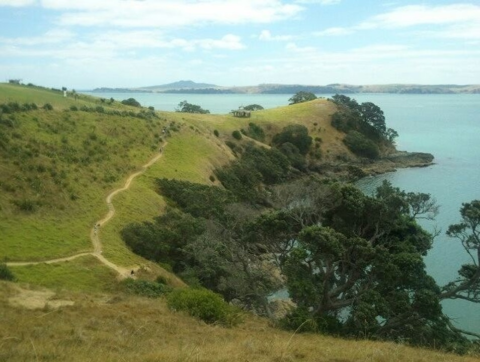 The Headlands Trail Auckland  New Zealand
