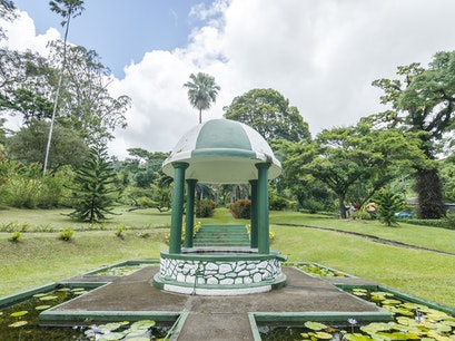 St. Vincent Botanical Gardens Kingstown  Saint Vincent and the Grenadines