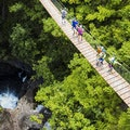 Umauma Falls and Zipline Experience Hakalau Hawaii United States
