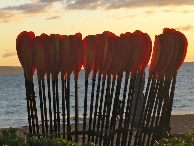 Sunset Paddles