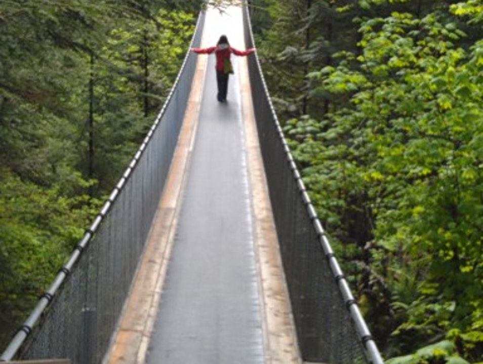 Coastal Rainforest Canopy Walk  Vancouver  Canada