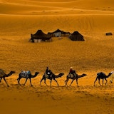Camel Trekking Merzouga,Overight in desert camp