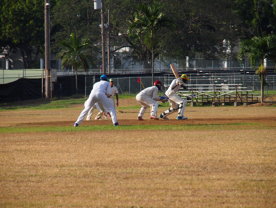 Where To Catch A Little Afternoon Cricket in Kingston Kingston  Jamaica