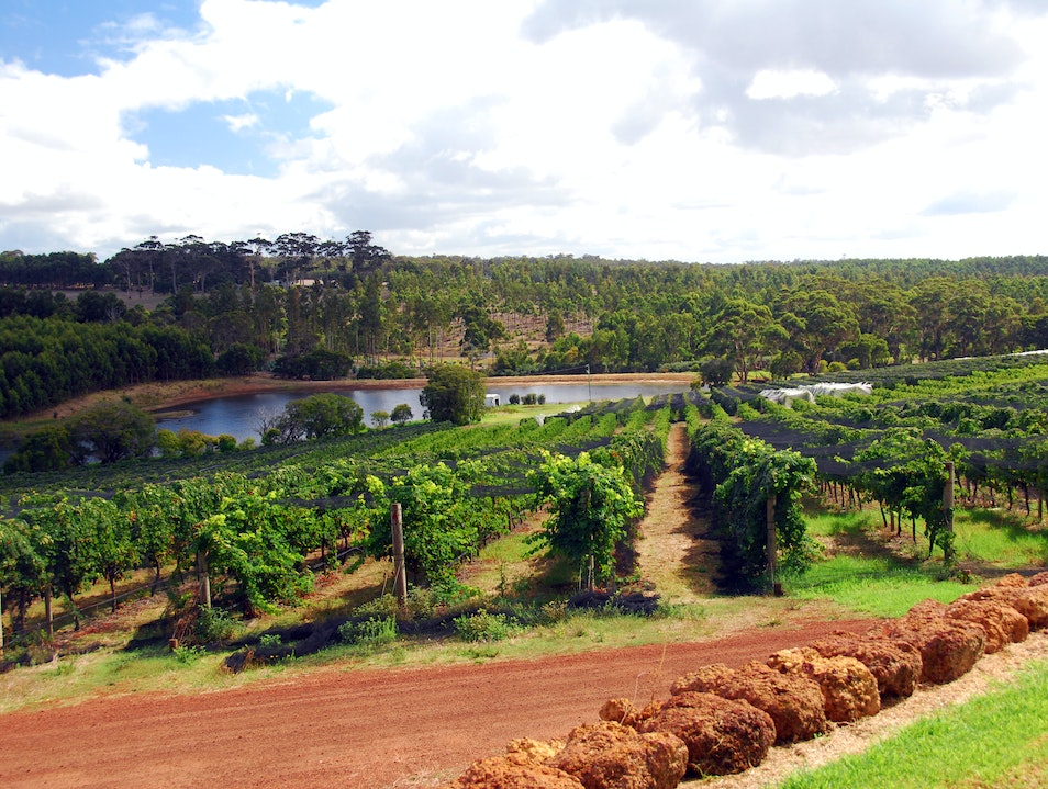 Tour Australian Wine Country Margaret River  Australia
