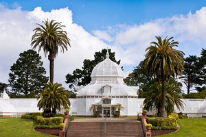 San Francisco's Golden Gate Park