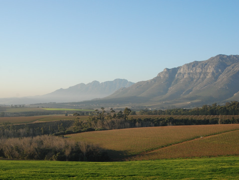 Wine Escapes - Private Wine Tours Cape Town  South Africa