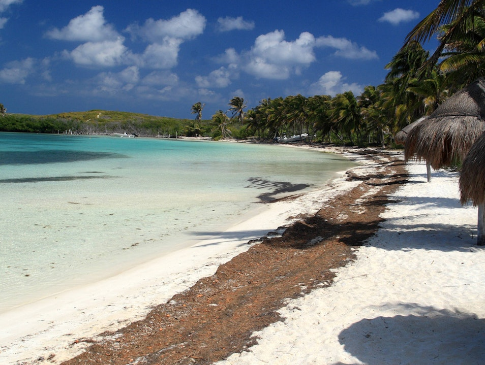 Join a Select Few on Isla Contoy