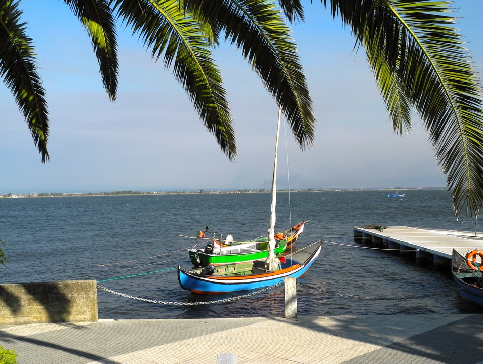 Fishing Boats in the Ria