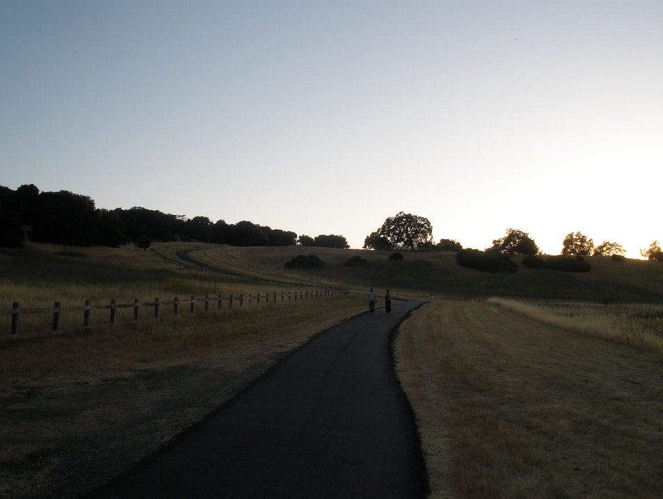 Wander Through the Foothills Stanford California United States