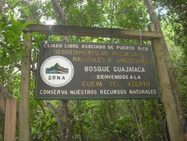 Guajataca Dry Forest Hike & Caves