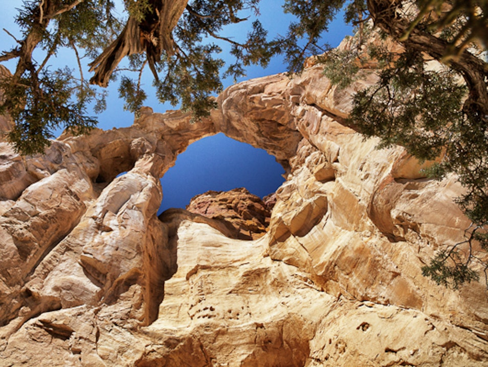 An impressive arch named for a National Geographic project Grand Staircase-Escalante National Monument Utah United States