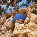 Grosvenor Arch Grand Staircase-Escalante National Monument Utah United States
