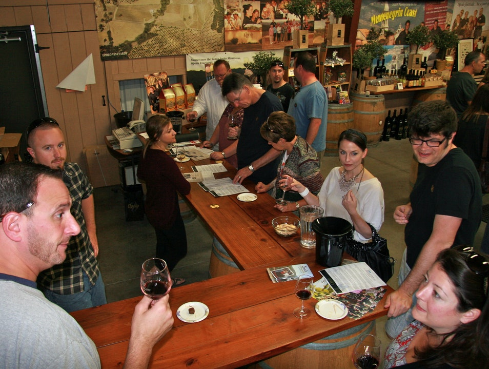 Let Your Hair Down Winery... Paso Robles California United States