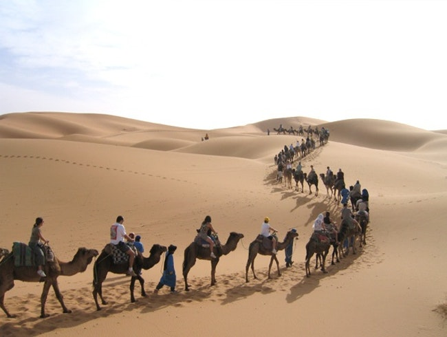 Camel trecking  tours