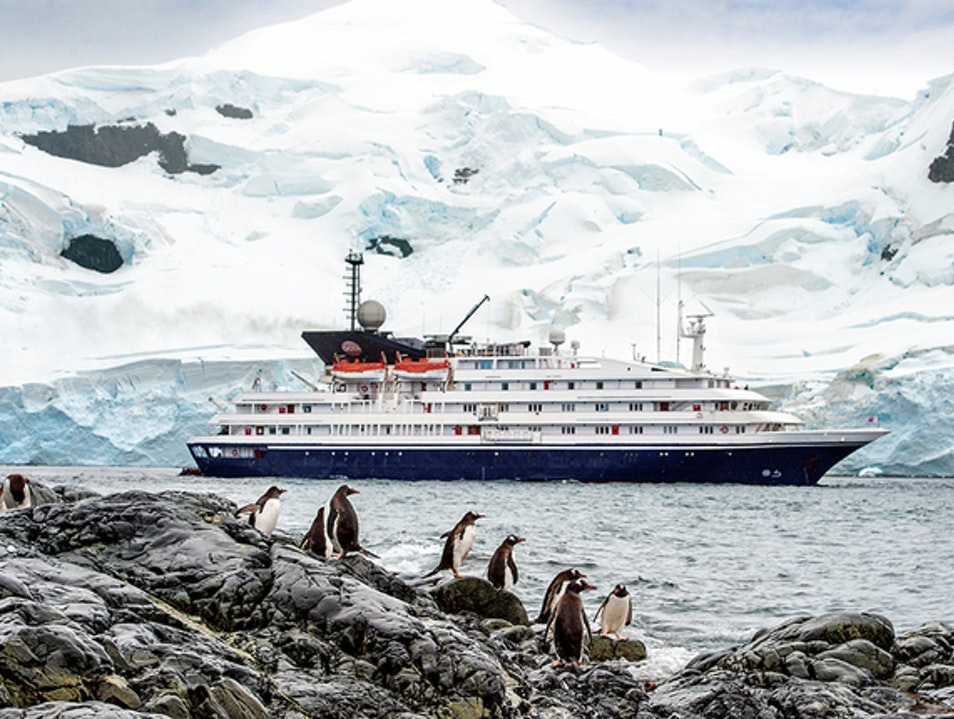 Truly the trip of a lifetime    Antarctica