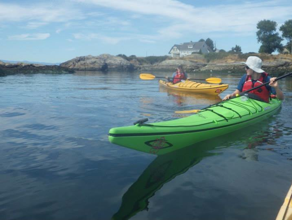Paddle round the Harbour