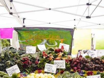 Ballard Sunday Farmers Market Seattle Washington United States