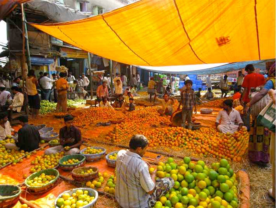 Calcutta's Secret Citrus Market Kolkata  India
