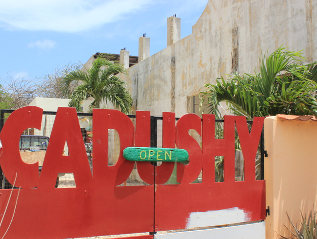 Drink Cactus Liqueur at Bonaire's Only On-Island Distillery