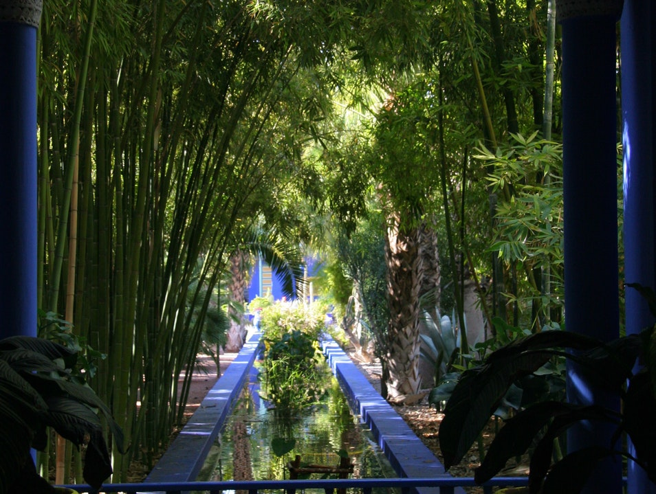 The Majorelle Gardens Marrakech  Morocco