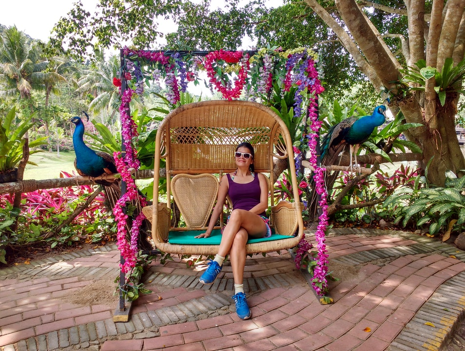 Scenic and Cultural experience at Yanoda Rainforest in Sanya, China