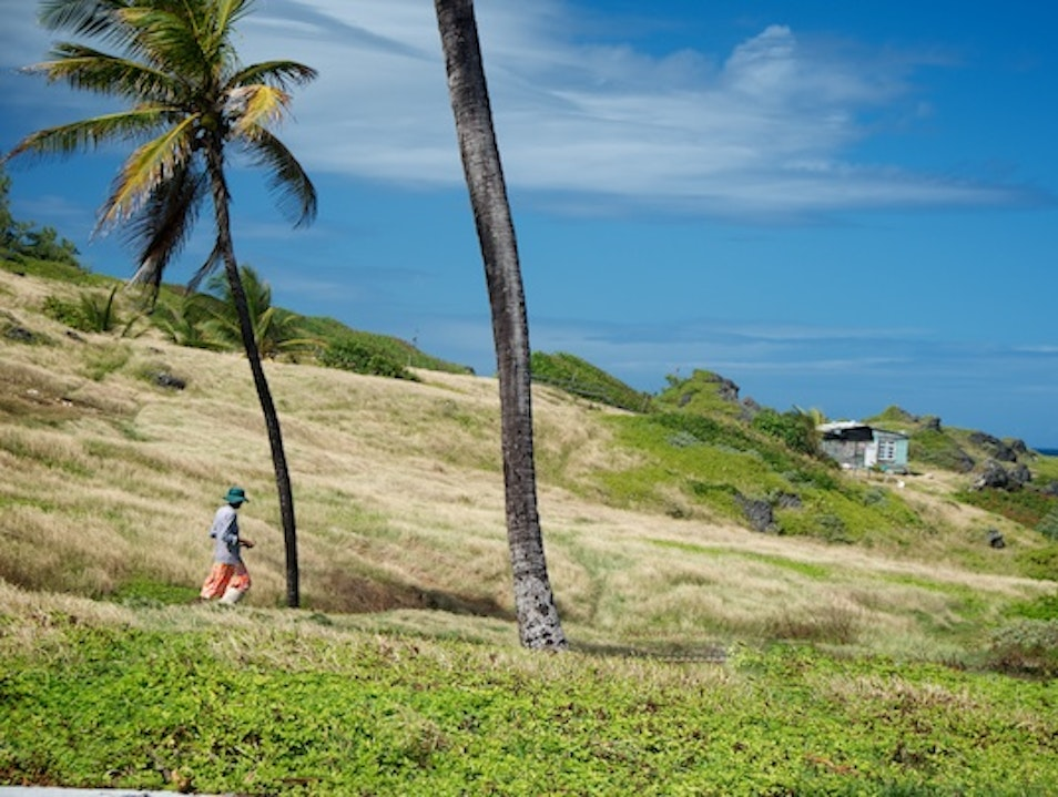 Take a Stroll to Nowhere in Barbados Bathsheba  Barbados