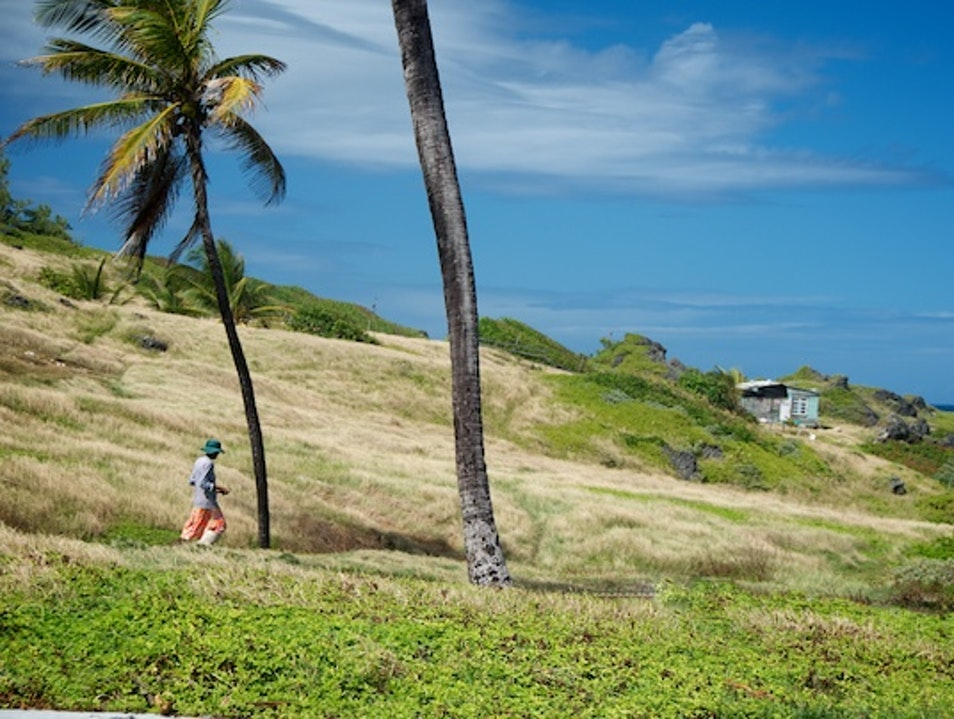Take a Stroll to Nowhere in Barbados