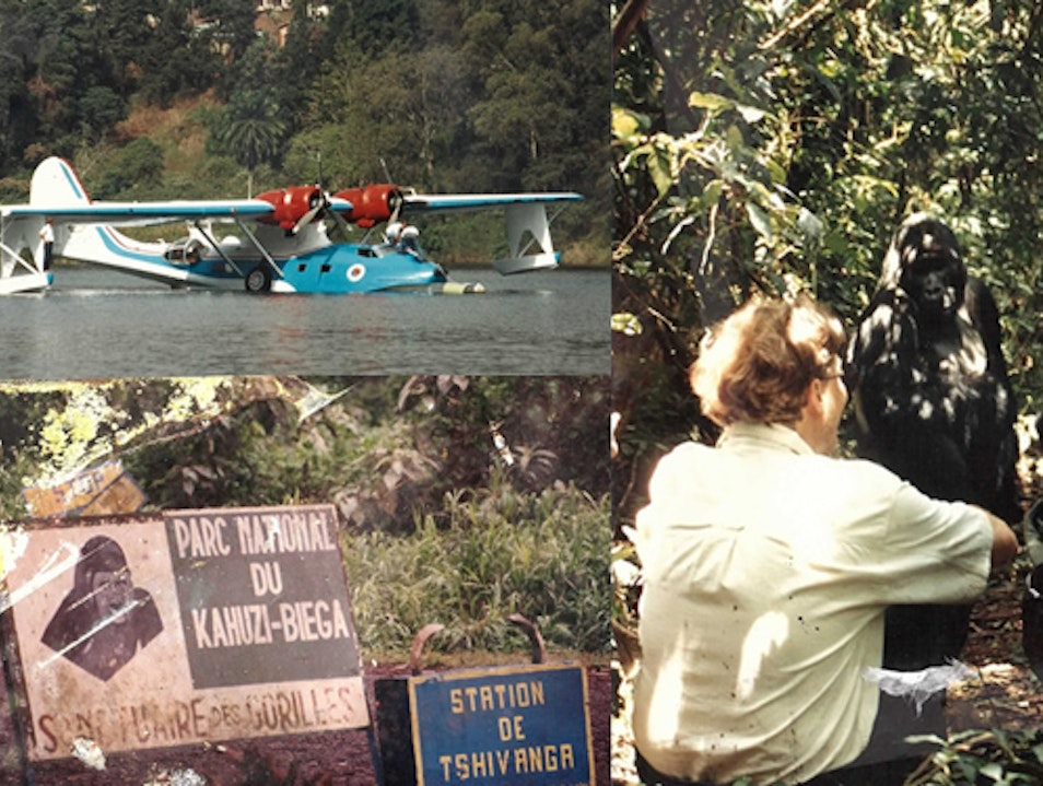 Gorilla Tracking in the DRC's (Zaire) Famous Kahuzi Biega National Park and getting there using a WW2 Catalina Seaplane