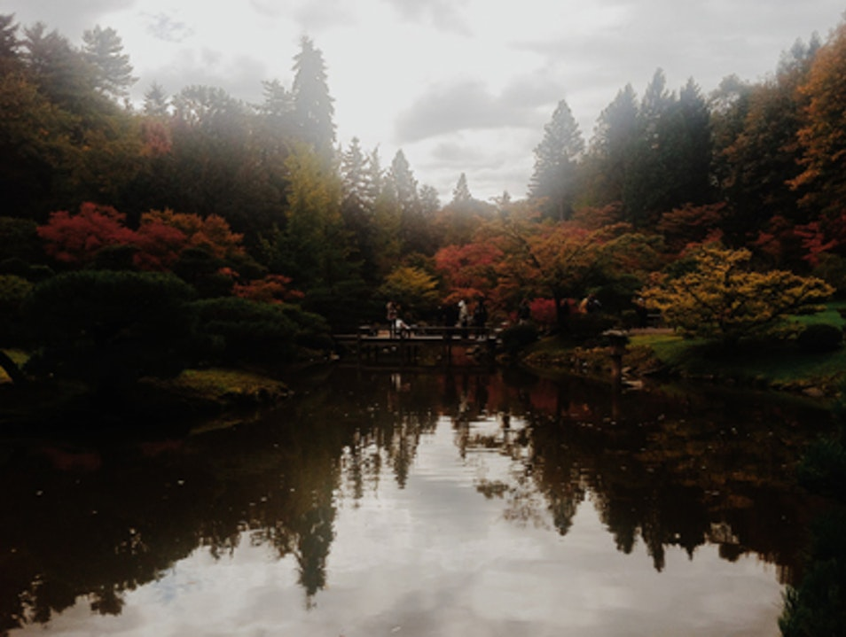 Fall at the Seattle Japanese Garden Seattle Washington United States