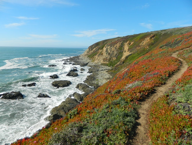 Hiking Along Bodega Bay Headlands, Bodega Bay, CA